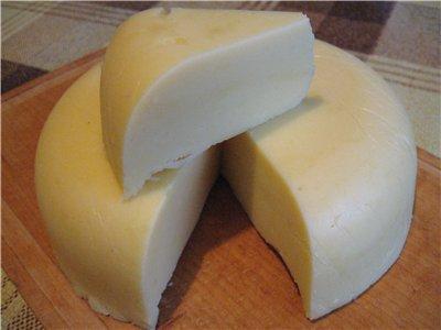 Сыр сулугуни в домашних условиях из молока рецепт с пошагово в